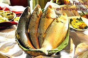Ilish Or Hilsa Festival @6 Ballygunge Place