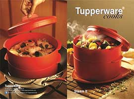Tupperware Steam It
