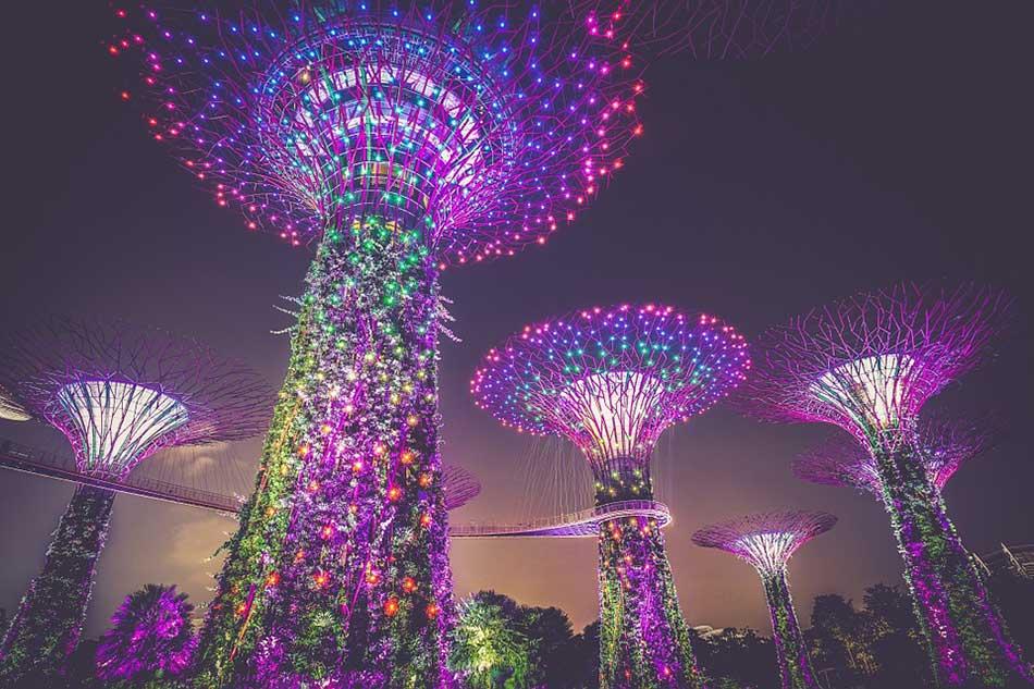 The Best Singaporean Cuisines Tourists Should Try
